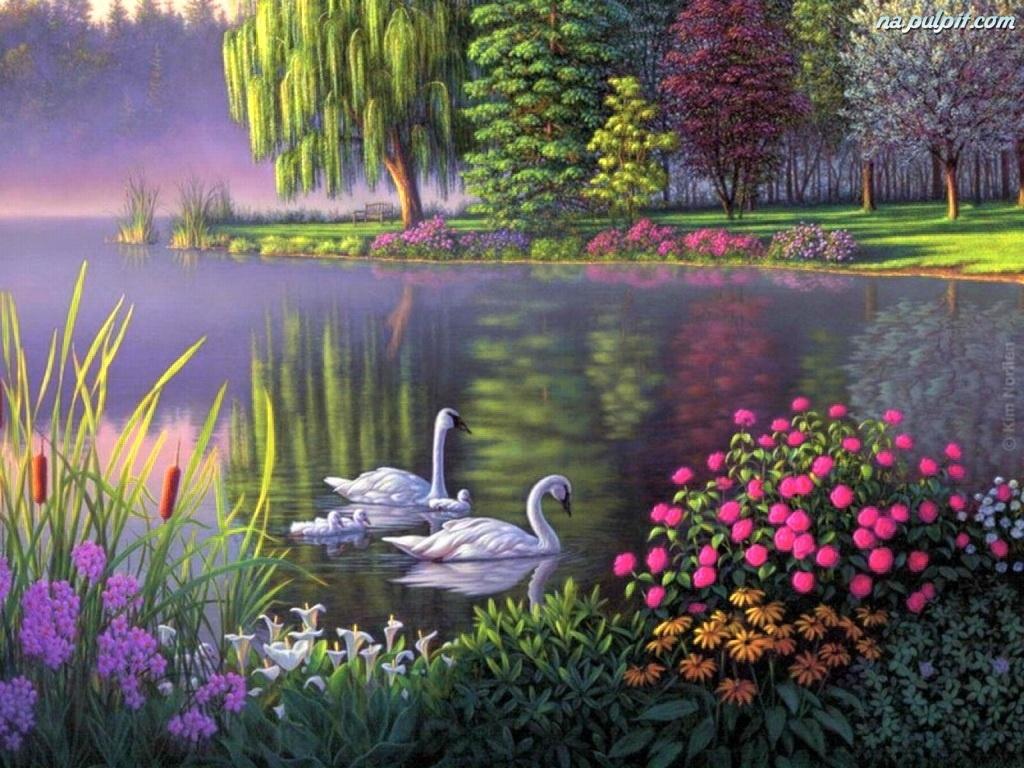 Kwiaty, Jezioro, Łabędzie